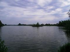 Naturschutzgebiet Alte Süderelbe